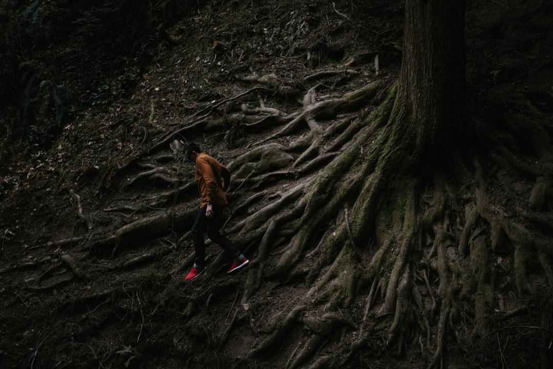 rob-august-photography-portland-painted-hills-hoyt-arboretum-crater-lake-cape-kiwanda-oregon-0015