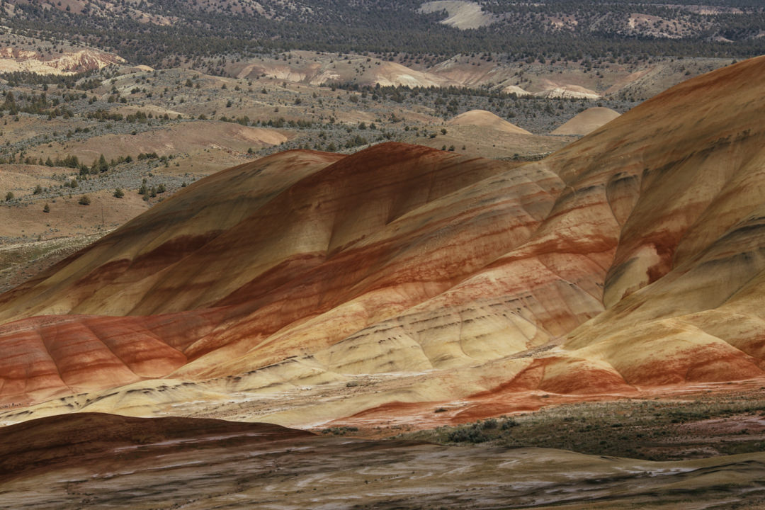 rob-august-photography-portland-painted-hills-hoyt-arboretum-crater-lake-cape-kiwanda-oregon-0026