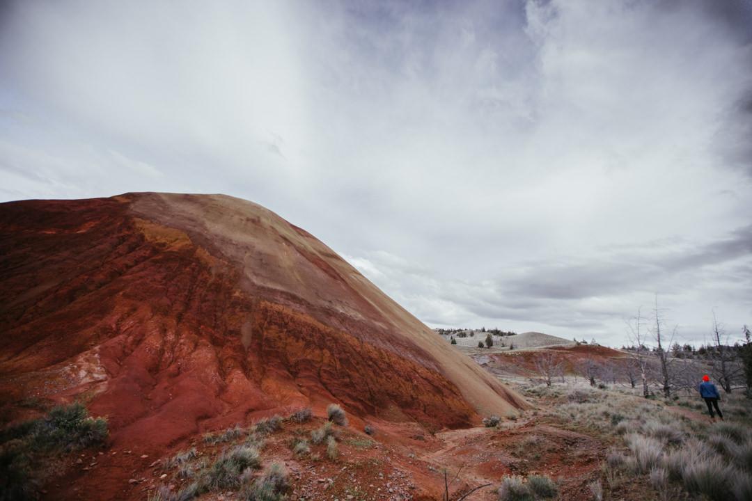 rob-august-photography-portland-painted-hills-hoyt-arboretum-crater-lake-cape-kiwanda-oregon-0034