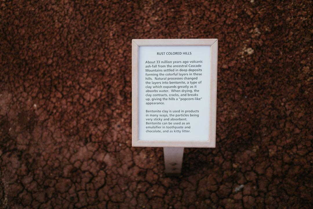 rob-august-photography-portland-painted-hills-hoyt-arboretum-crater-lake-cape-kiwanda-oregon-0035