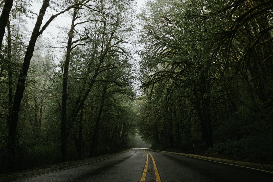 rob-august-photography-portland-painted-hills-hoyt-arboretum-crater-lake-cape-kiwanda-oregon-0042