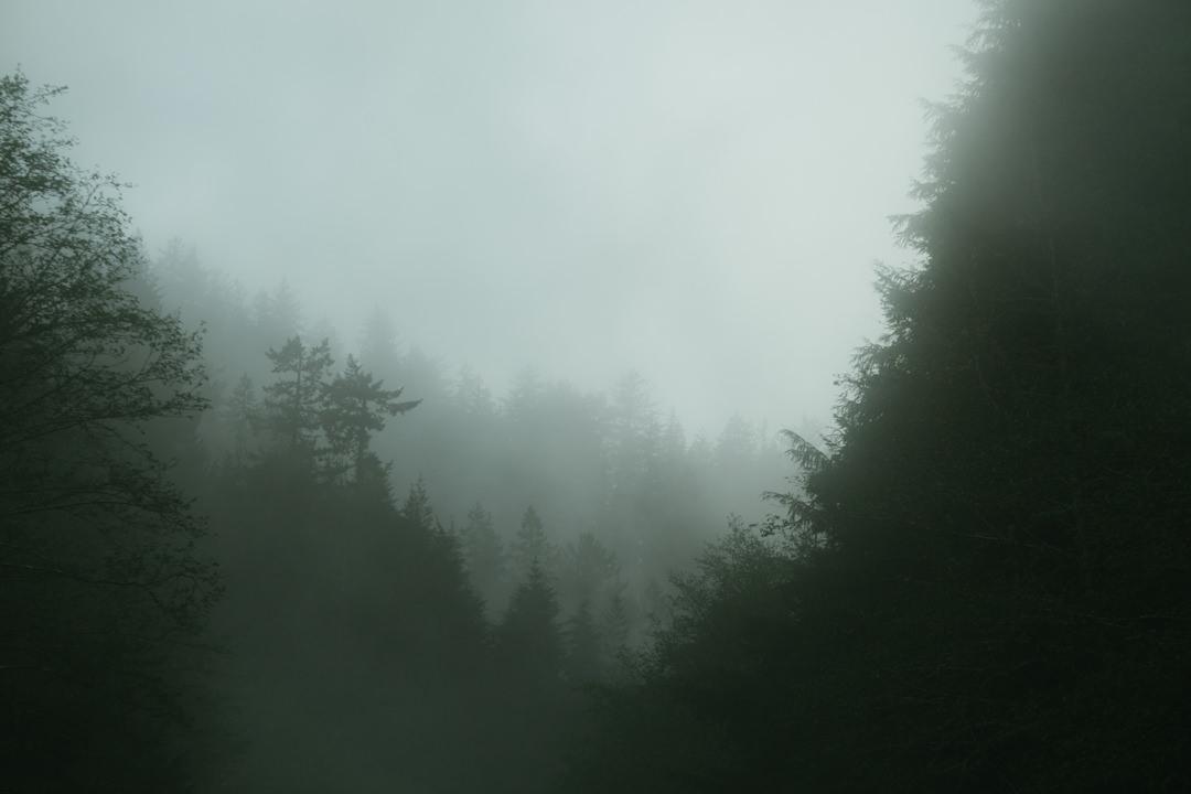 rob-august-photography-portland-painted-hills-hoyt-arboretum-crater-lake-cape-kiwanda-oregon-0049