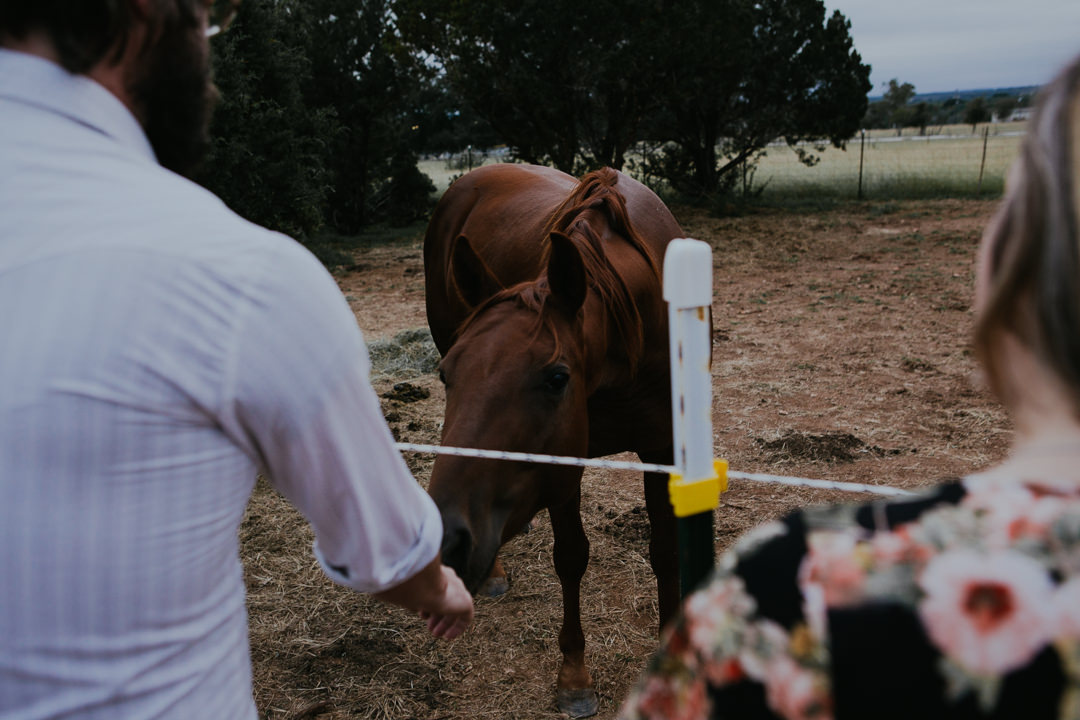 rob-august-photography-engagement-austin-wedding-aubrey-patrick-treaty-oak-distillery-0023
