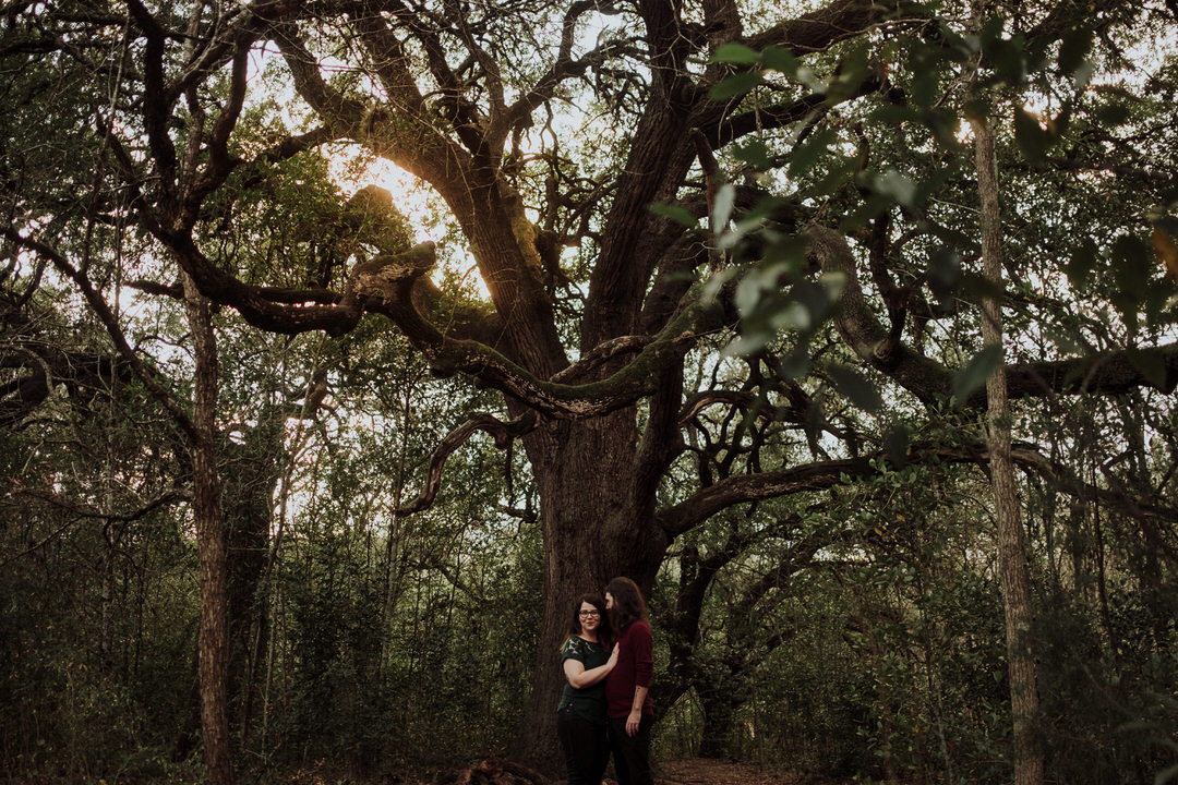 wide shot of tree with couple